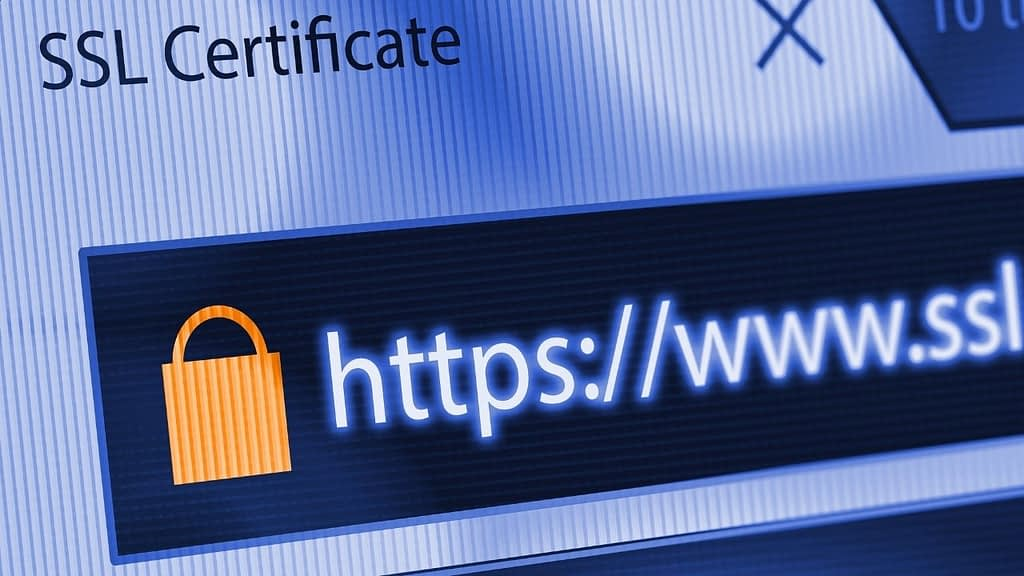 If you intend to furnish your webpage with a web-based business office setting where customers can come on your site and purchase items and services securely, then you should go for an SSL server certificate.