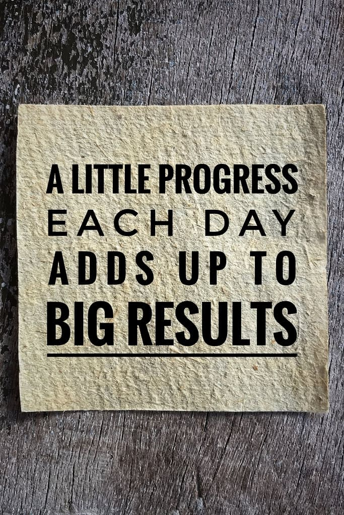 A Little Progress each day ads up to big results quote