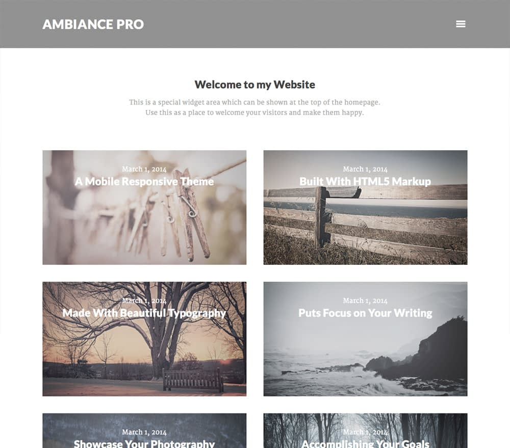 If your website is a party, then you're the host. You need a theme that gives your readers what they want most: you. Ambiance Pro places each visitor directly into a private conversation with you. Be the host you want to be with Ambiance Pro.