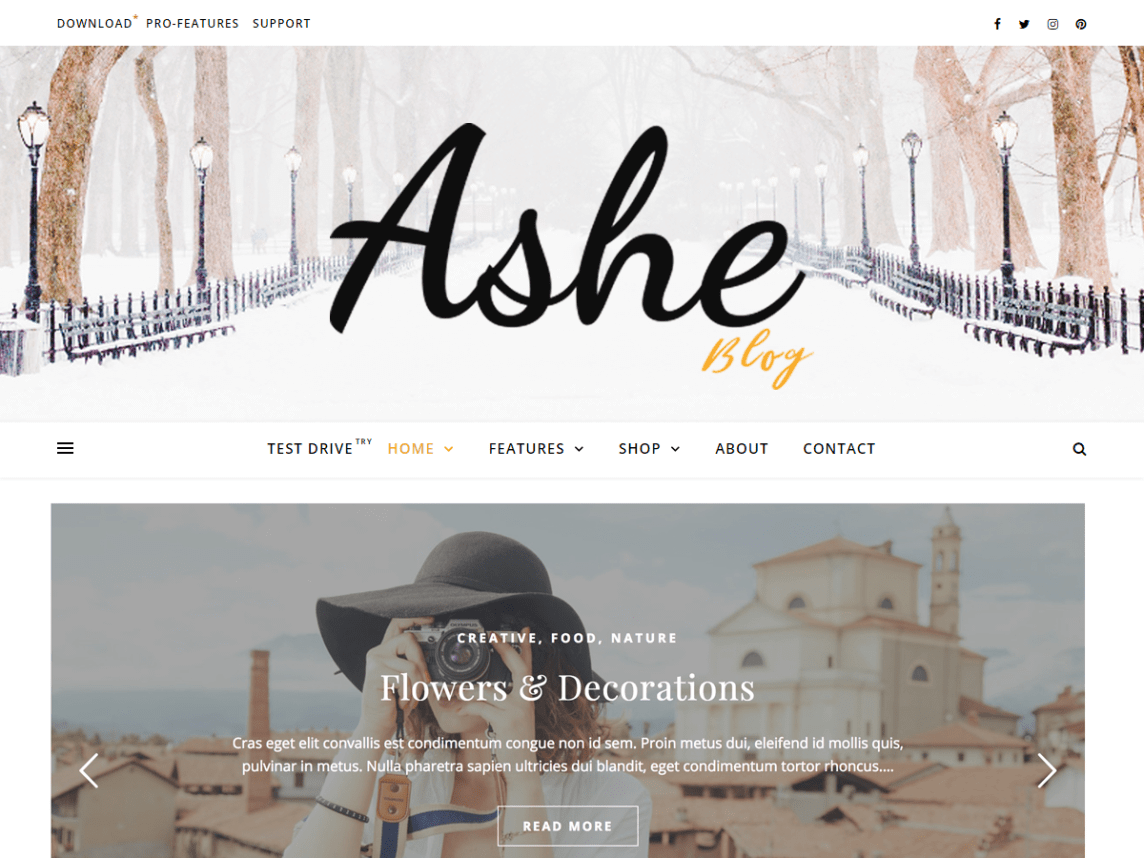 Ashe has been refined extensively during the past few years and has become one of the most popular free WordPress themes for bloggers.