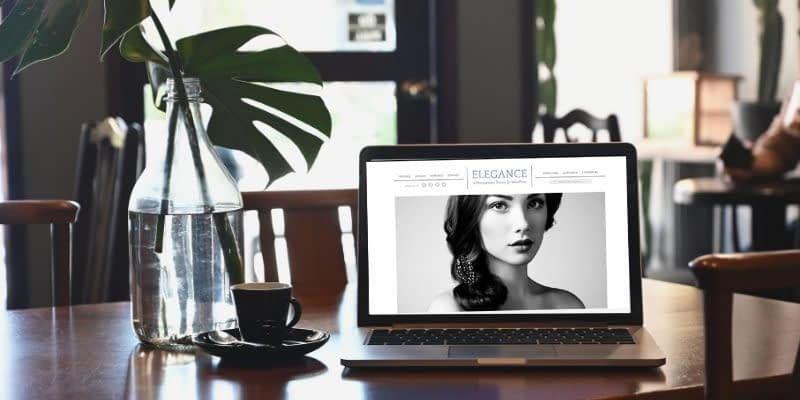 If you're looking for refinement and a polished presentation, your search is over. Elegance is a graceful theme for smart, sophisticated businesses. You'll love the large images and stately typography in Elegance. It's feature-rich and easily customizable as well.
