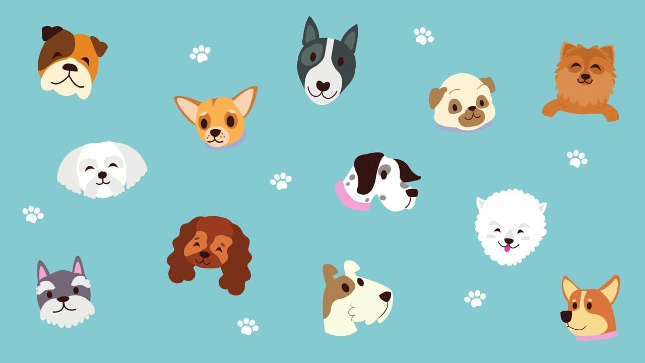 Turquoise Dogs and Paw Print Cute Zoom Virtual Background