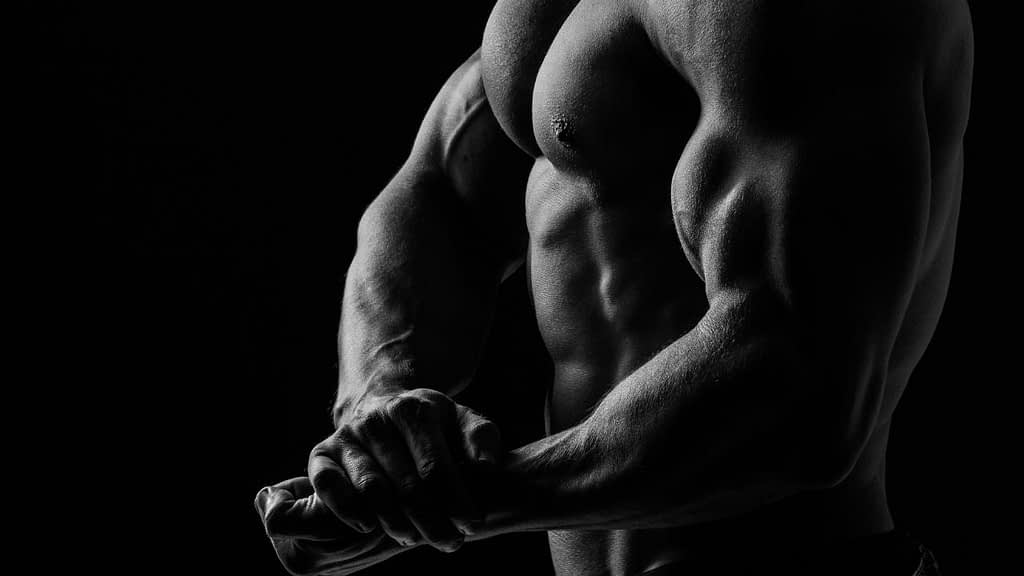 Bodybuilding.com has an affiliate program. Once you have been approved, you'll receive a special affiliate link.