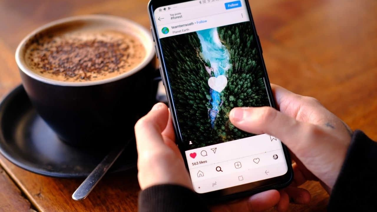 Cross-channel promotion is popular. There are many ways to embed an Instagram feed on your blog or website to help drive traffic to your Instagram account. Here's How.