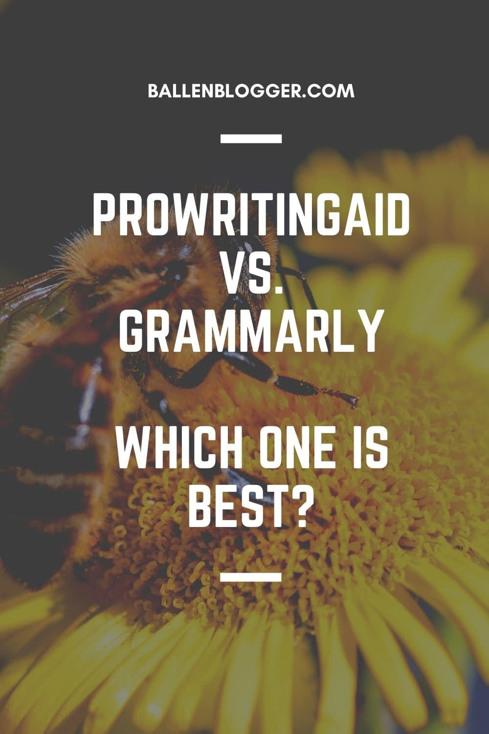 Many writers love using Grammarly or ProWritingAid to enhance their writing and check for spelling mistakes. Various people use these software platforms, including professional writers, journalists, students, freelancers, and people working in the corporate world.