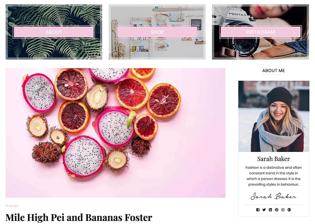 Blossom Feminine Pro is an ideal WordPress Theme for the Lifestyle Blogger. Beauty, Fashion, Travel, all shine here.