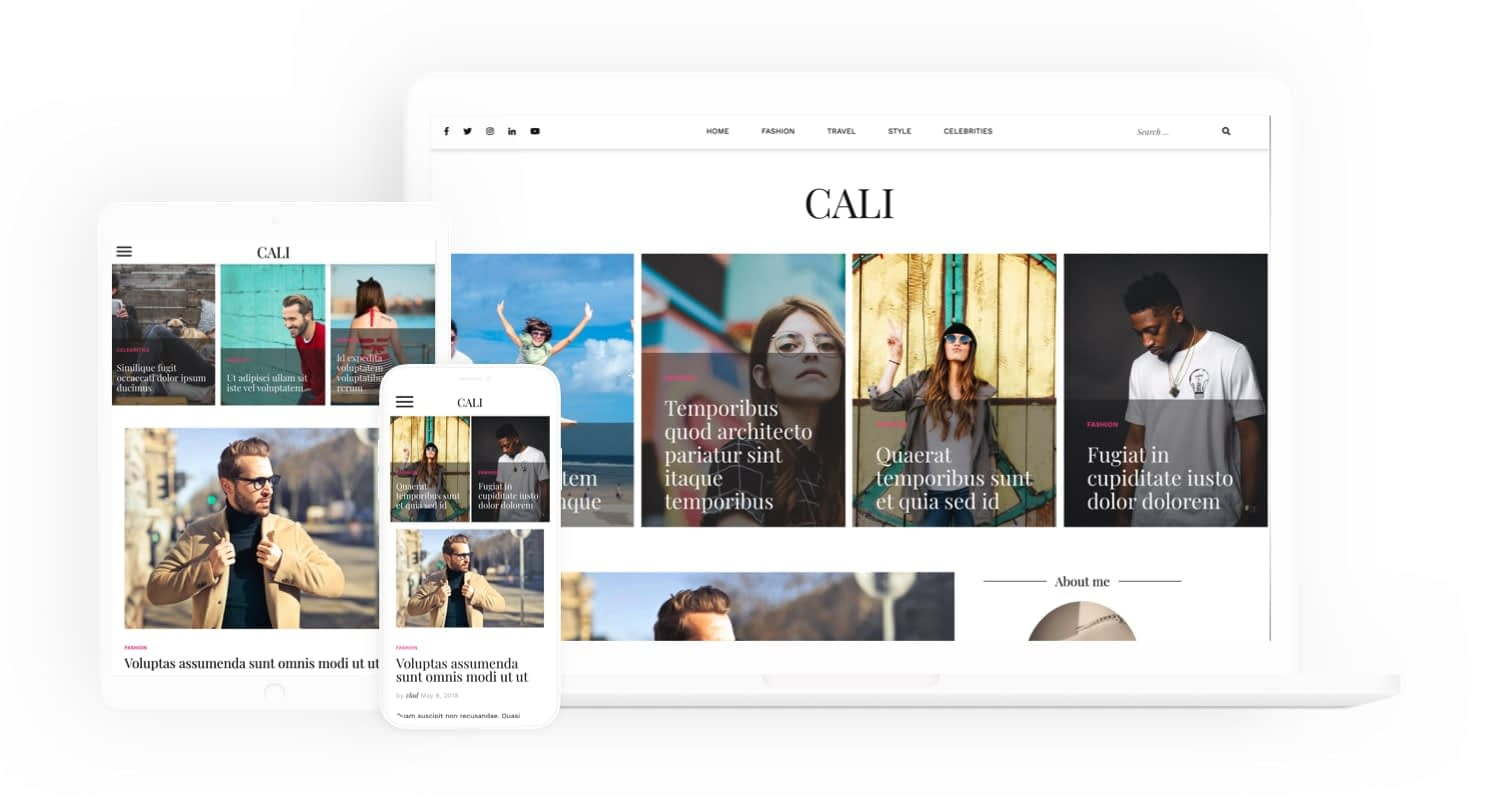 Due to the customization features, Cali is toward the top of the list for looking for a free theme.