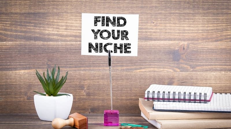 If you are still contemplating the topic for your niche website, this guide can help. While I suggest you choose something you are passionate about, or willing to hire writers for, there are many ideas for you to consider.
