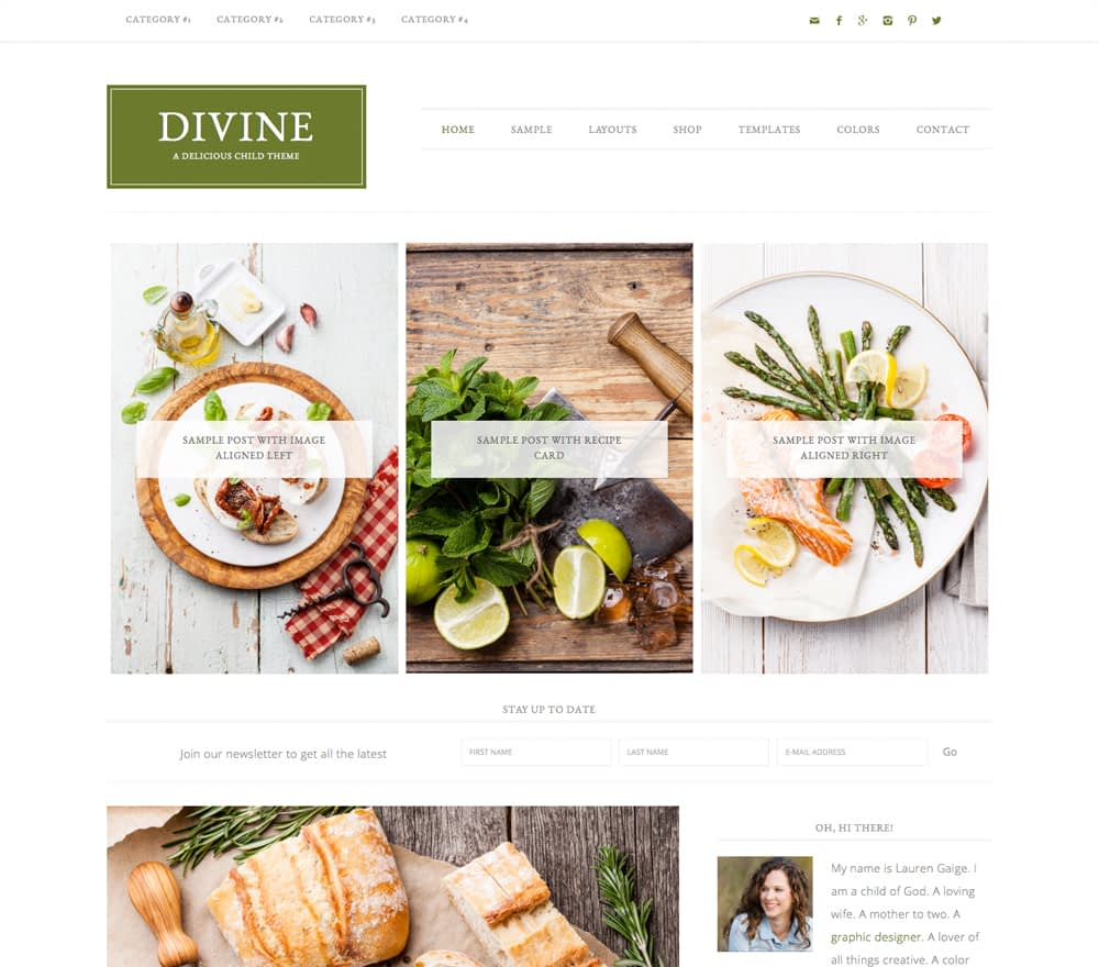 Versatility and Personalization is what we are about. The Divine theme is all that and more! This theme can be used for any genre of blog or site, can be customized to fit your images and style, and completely make it your own.
